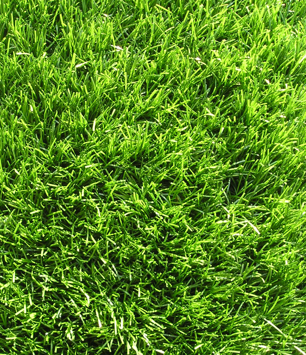 Polyethylene Monofilament Texturized Nylon Thatch Synthetic Grass 80 oz Face Weight